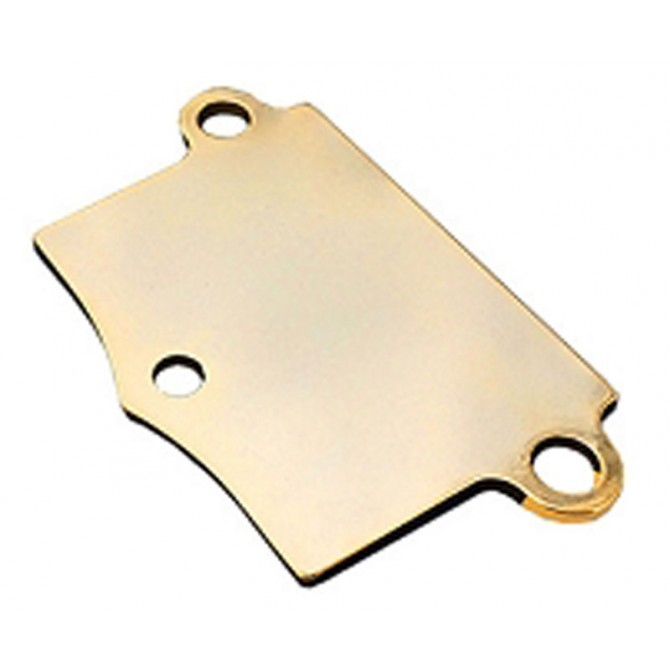 "Babicz 3-Point 1/8"" Shim (Gold)"